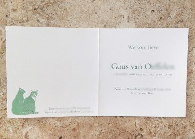 Custom Birth Announcement - Guus - total in marble interior-blurred details