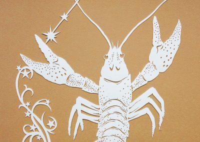 Papercut Illustrations for Libelle Magazine - Cancer