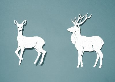 Papercut Illustrations for Libelle Magazine - Deer