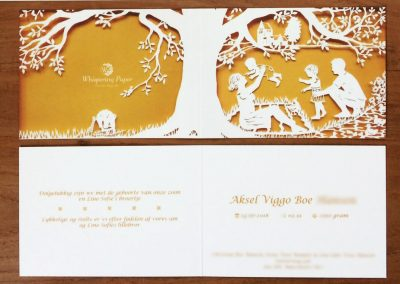 Papercut Birth Announcement - Aksel - Card - Blurred details