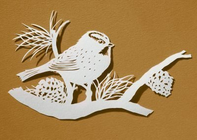 Papercut Illustrations for Libelle Magazine - Great Tit