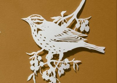 Papercut Illustrations for Libelle Magazine - Song Thrush
